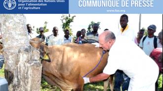 IMG Communiqué FAO