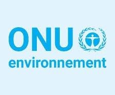 Logo 2 ONU Environnement