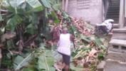 Une tornade provoque des dégats matériels dans la Grand'Anse